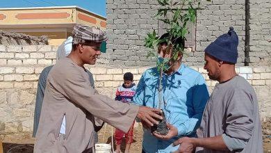 صورة مبادرة هنجمّلها تشارك بزراعة 30000 شتلةفي أسبوع تشجير المدارس بـ يوسف الصدّيق