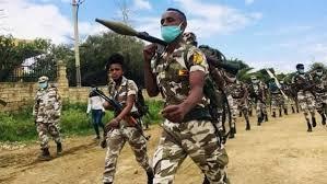 صورة جبهة تيجراي تقصف «أمهرة» بالصواريخ.. والجيش الإثيوبي يحاصر عاصمة الإقليم