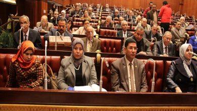 صورة منى فؤاد تكتب: المرأة مش في البرلمان يا ريس !!