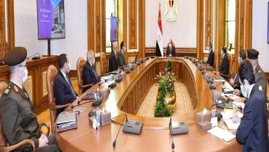 صورة الرئيس يتابع محاور الخطة التنفيذية لانتقال الجهات الحكومية إلى العاصمة الإدارية الجديدة