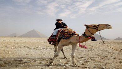 صورة بالصور .. الطفل المصري- صاحب لقب شخصية 2020 بالنمسا- يزور آثار الهرم