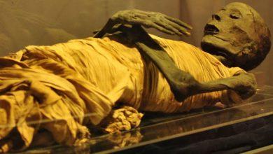 صورة حدَثٌ عالمي على أرض المحروسة.. نقل المومياوات الملكية إلى المتحف القومي للحضارة المصرية