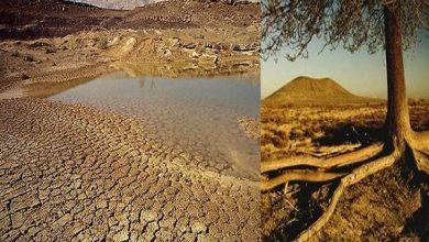 صورة د. فوزى العيسوي يكتب: لماذا نحتفل باليوم العالمي لمكافحة التصحر والجفاف؟