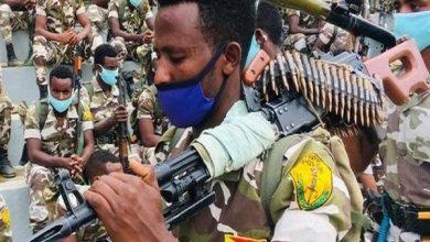 صورة قوات تيجراي تعلن انتزاع بلدة مهمة من أيدي القوات الحكومية في إثيوبيا وتتقدم جنوبًا