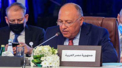 صورة وزير الخارجية المصري: سنحمي حقنا في الحياة حال تعرضنا للخطر بسبب السد الإثيوبي