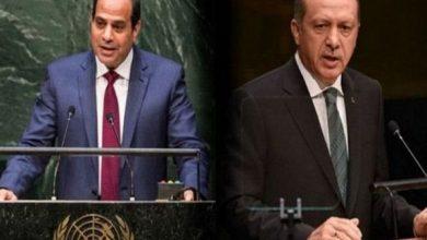 صورة وزير الخارجية المصري يشيد بمنع تركيا عناصر جماعة الإخوان من الظهور الإعلامي