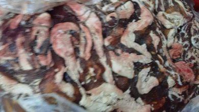 صورة ضبط لحوم فاسدة داخل ثلاجة في بيت مهجور بالفيوم !!