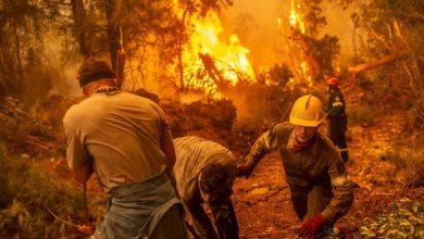 صورة أتفهم تمامًا آلام مواطنينا.. رئيس وزراء اليونان يعتذر عن فشل الحكومة في إخماد حرائق الغابات